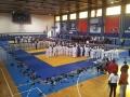 PartizanEs20142