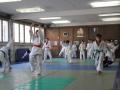 Zajednicji trening JK Novi Beograd i JK Olimp_9120